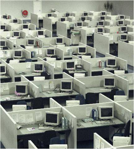 Lots-of-cubicles