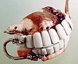 Washington_s_dentures