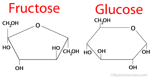 Fructose-vs-Glucose